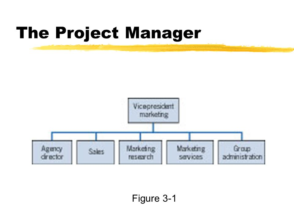 The Project Manager Figure 3-1