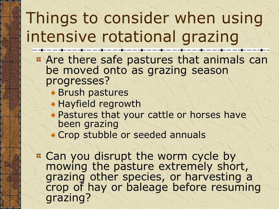 Things to consider when using intensive rotational grazing