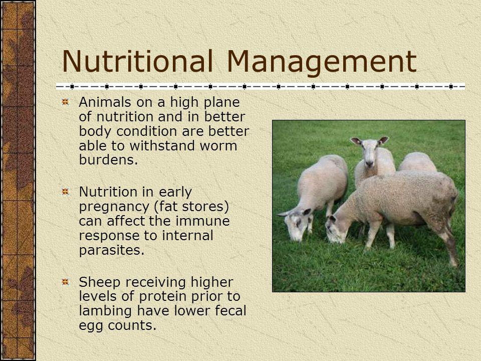 Nutritional Management