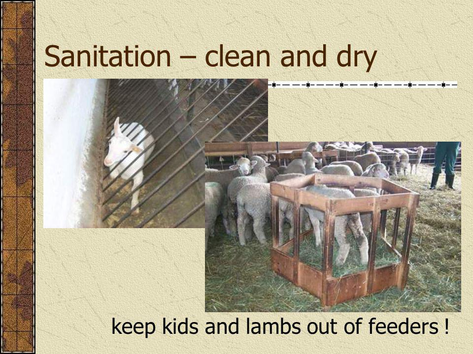 Sanitation – clean and dry