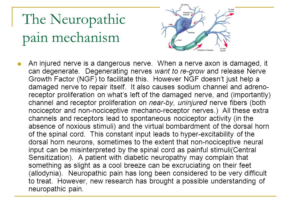 The Neuropathic pain mechanism