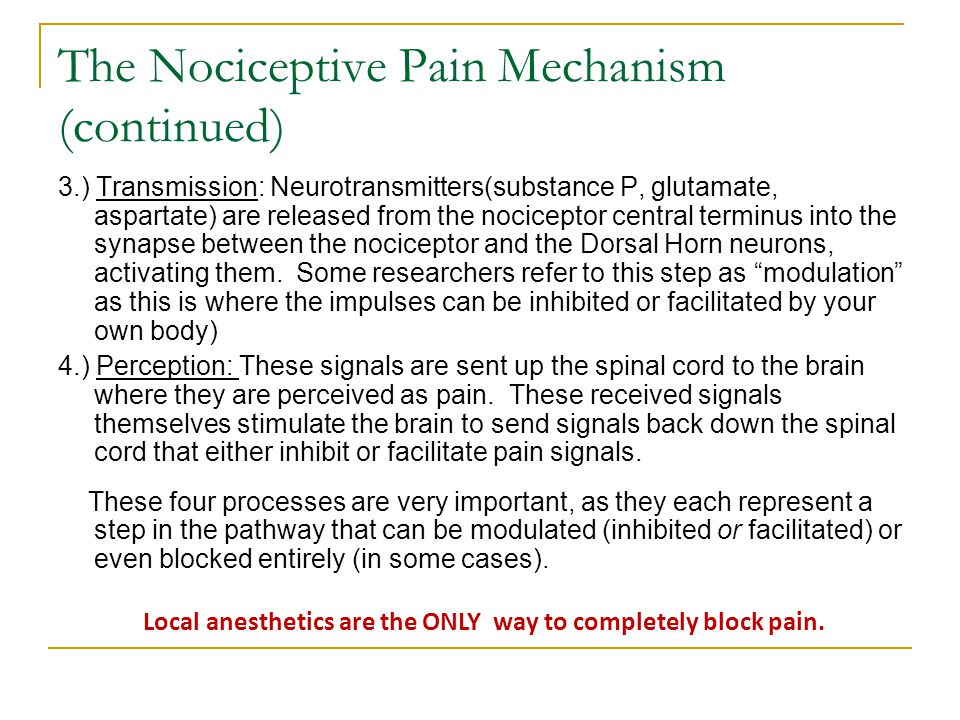 The Nociceptive Pain Mechanism (continued)