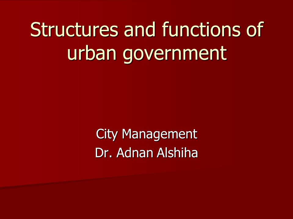 Structures and functions of urban government