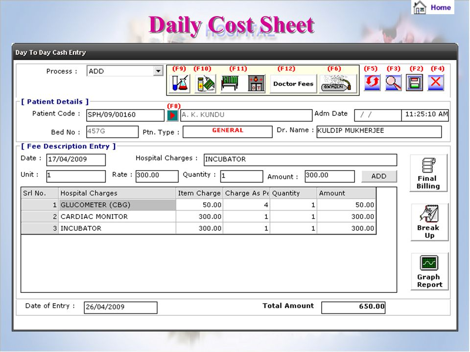 Daily Cost Sheet
