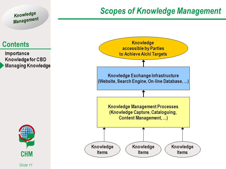 Scopes of Knowledge Management