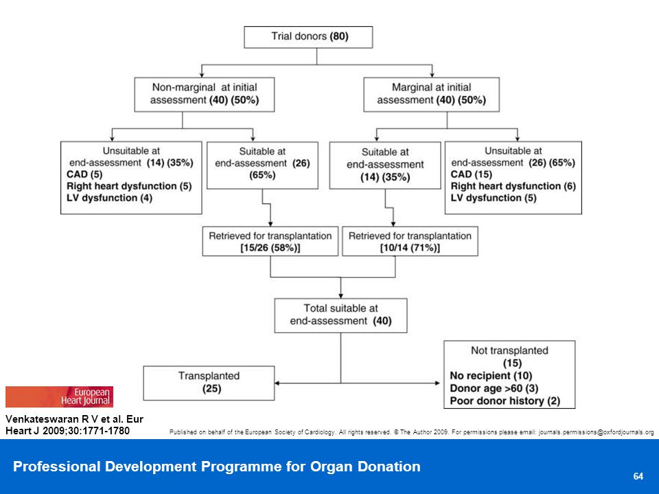 Organization chart of donor heart outcomes within the study.
