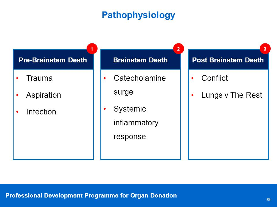 Pathophysiology Trauma Aspiration Infection Catecholamine surge
