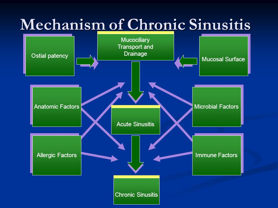 Mechanism of Chronic Sinusitis