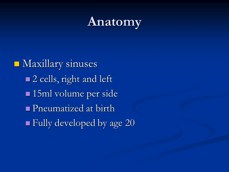 Anatomy Maxillary sinuses 2 cells, right and left 15ml volume per side