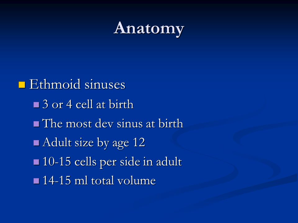Anatomy Ethmoid sinuses 3 or 4 cell at birth