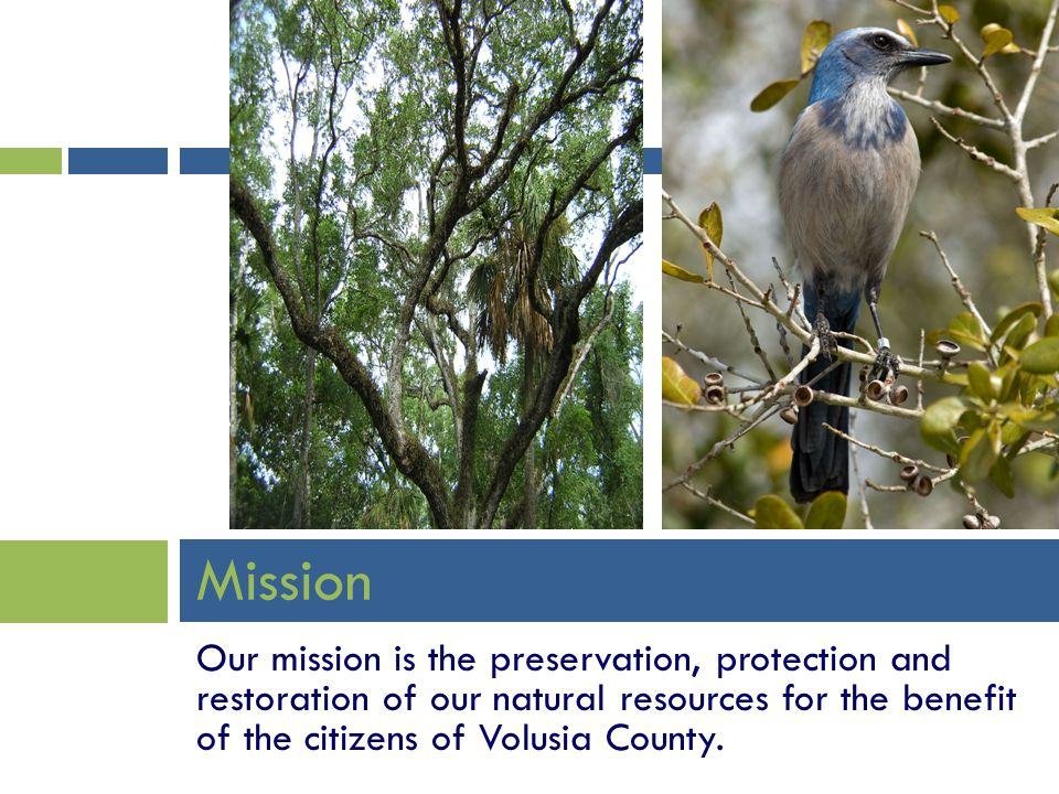 Mission Our mission is the preservation, protection and restoration of our natural resources for the benefit of the citizens of Volusia County.