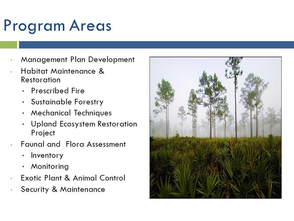 Program Areas Management Plan Development