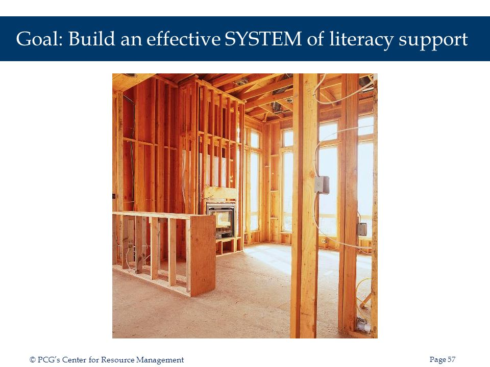 Goal: Build an effective SYSTEM of literacy support