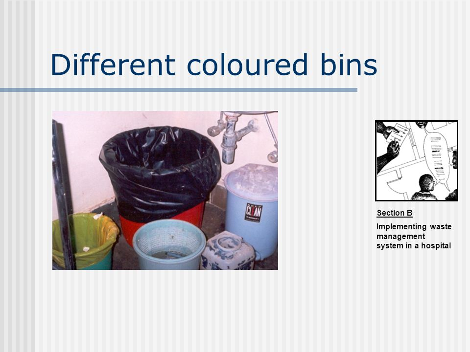 Different coloured bins