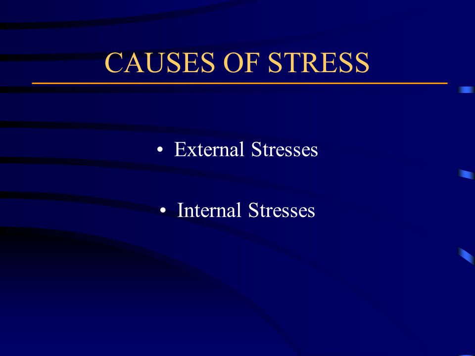 CAUSES OF STRESS External Stresses Internal Stresses