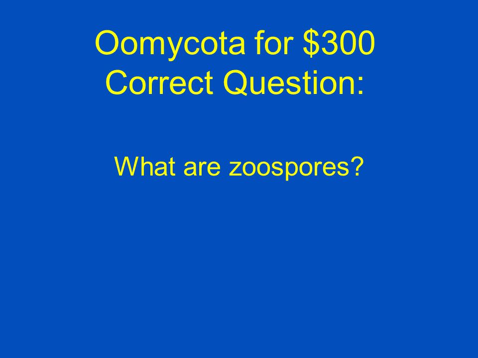 Oomycota for $300 Correct Question: