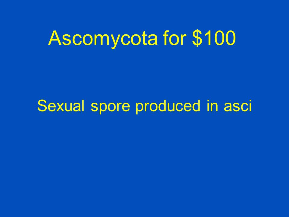 Sexual spore produced in asci