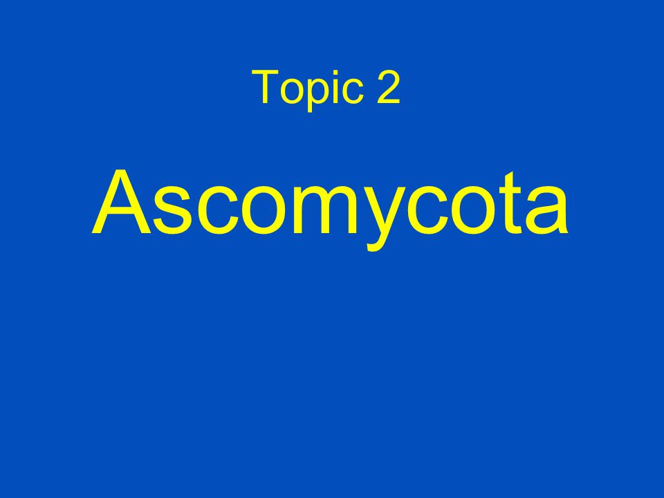 Topic 2 Ascomycota