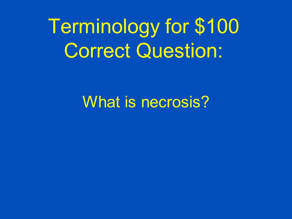 Terminology for $100 Correct Question: