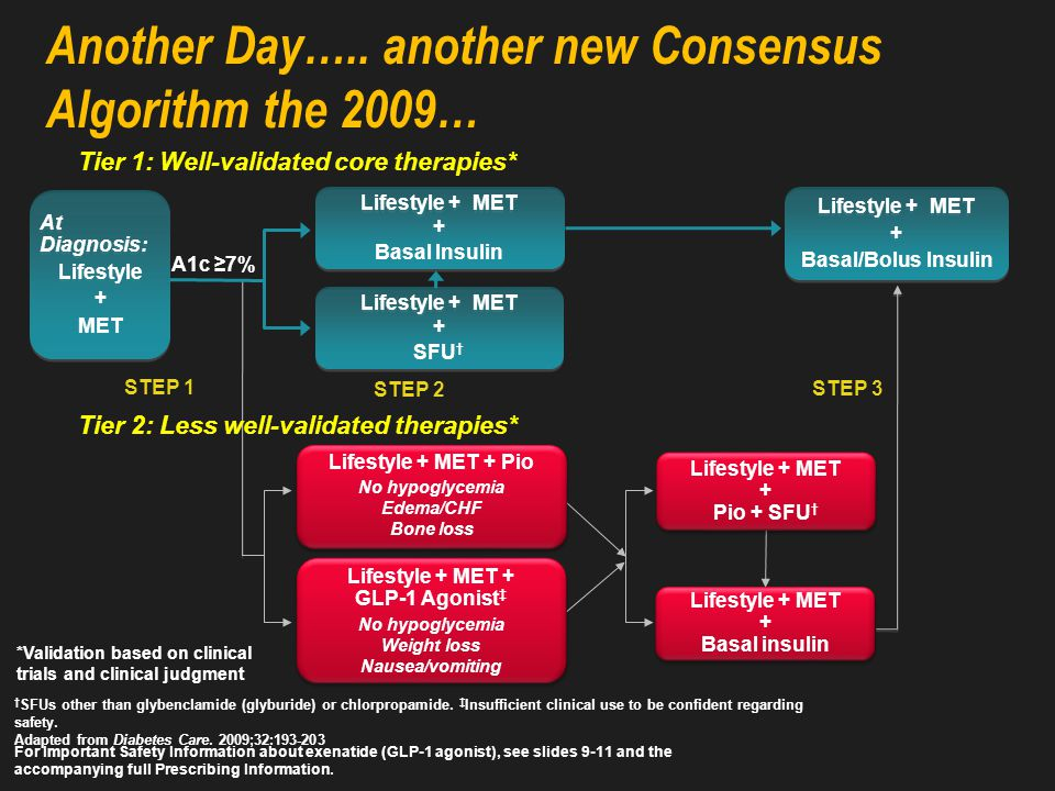 The 2006 ADA Treatment Algorithm