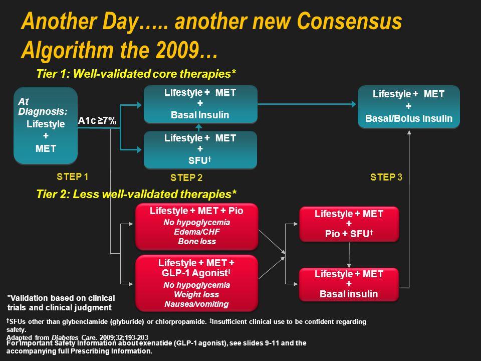 The 2006 ADA Treatment Algorithm
