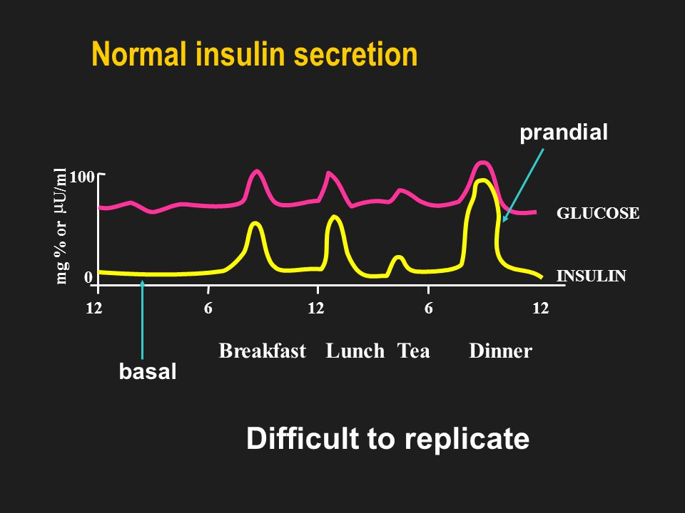 Insulin Therapy Basal – Bolus Concept