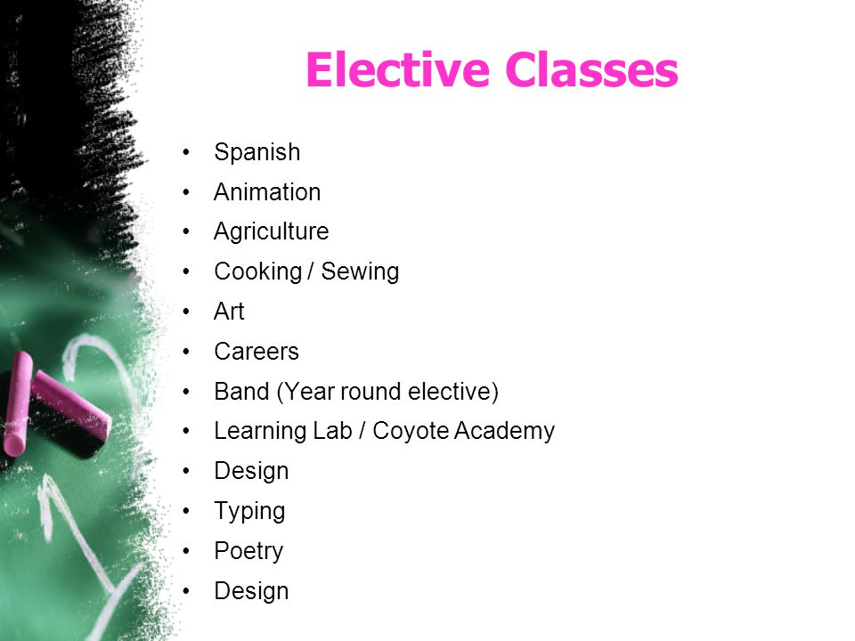 Elective Classes Spanish Animation Agriculture Cooking / Sewing Art