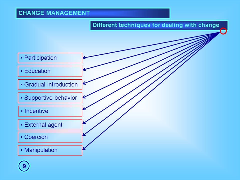 CHANGE MANAGEMENT Different techniques for dealing with change. Participation. Education. Gradual introduction.