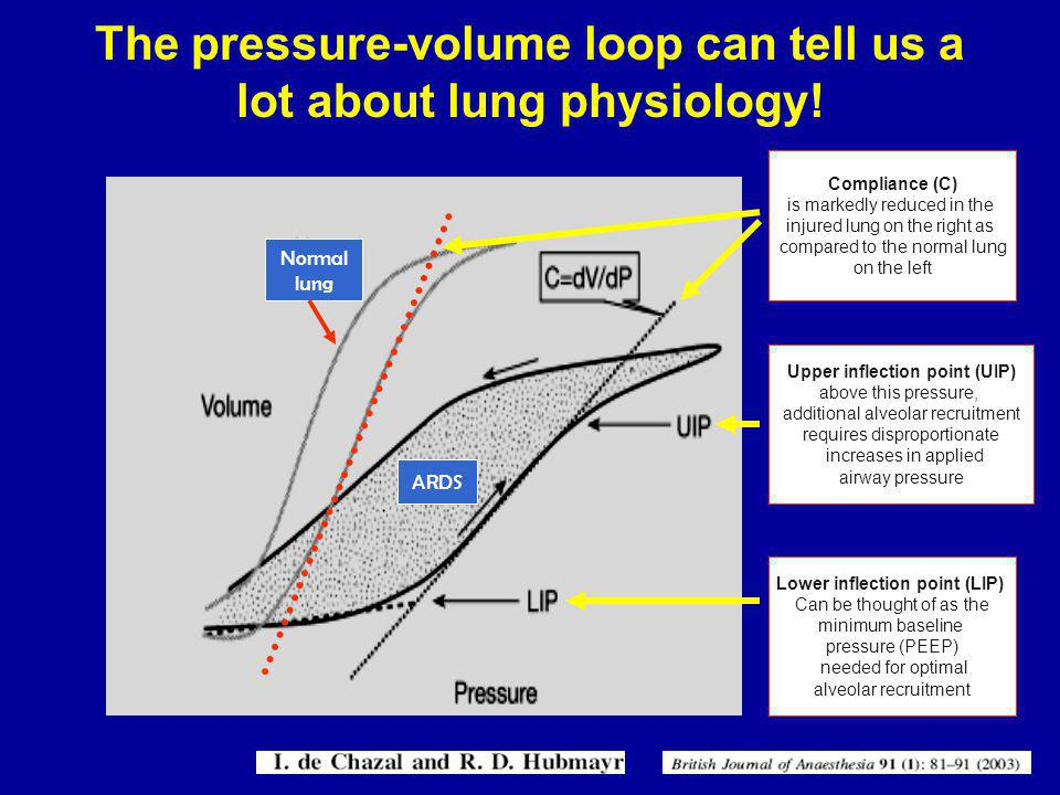 The pressure-volume loop can tell us a lot about lung physiology!