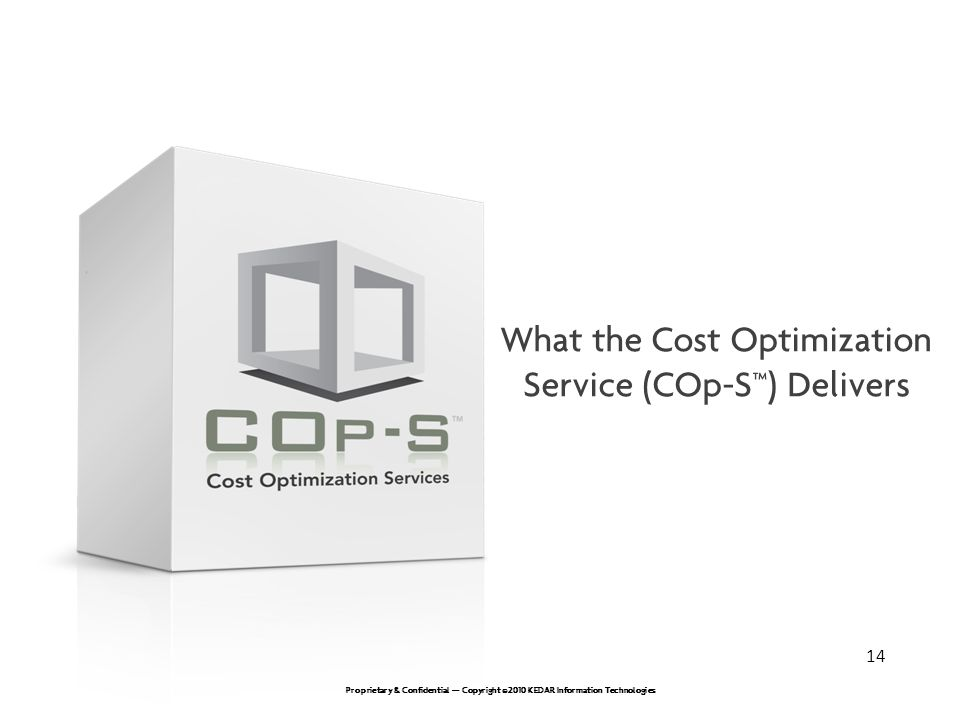 What the Cost Optimization Service (COp-S™) Delivers