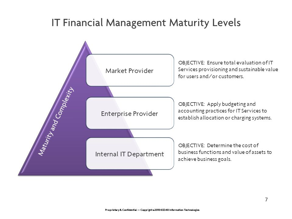 IT Financial Management Maturity Levels