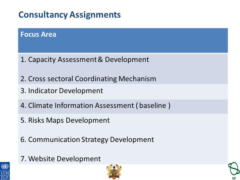 Consultancy Assignments