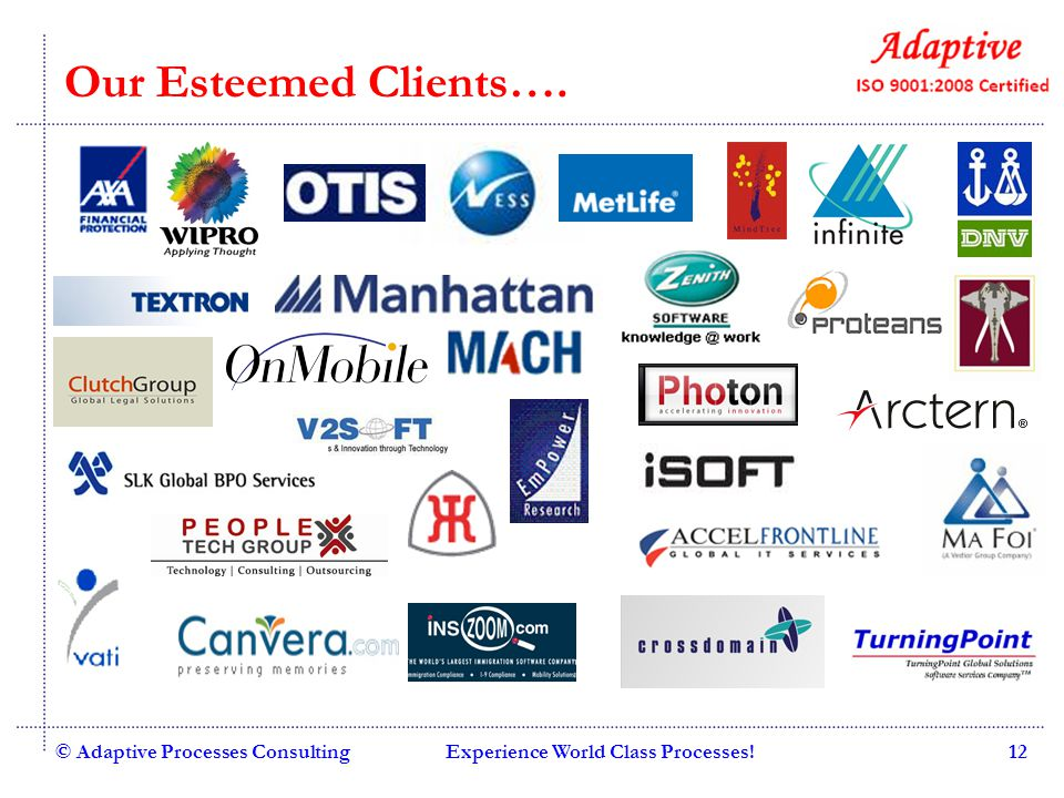 Our Esteemed Clients…. © Adaptive Processes Consulting