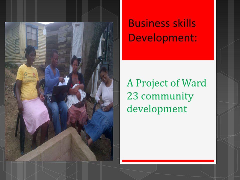 A Project of Ward 23 community development