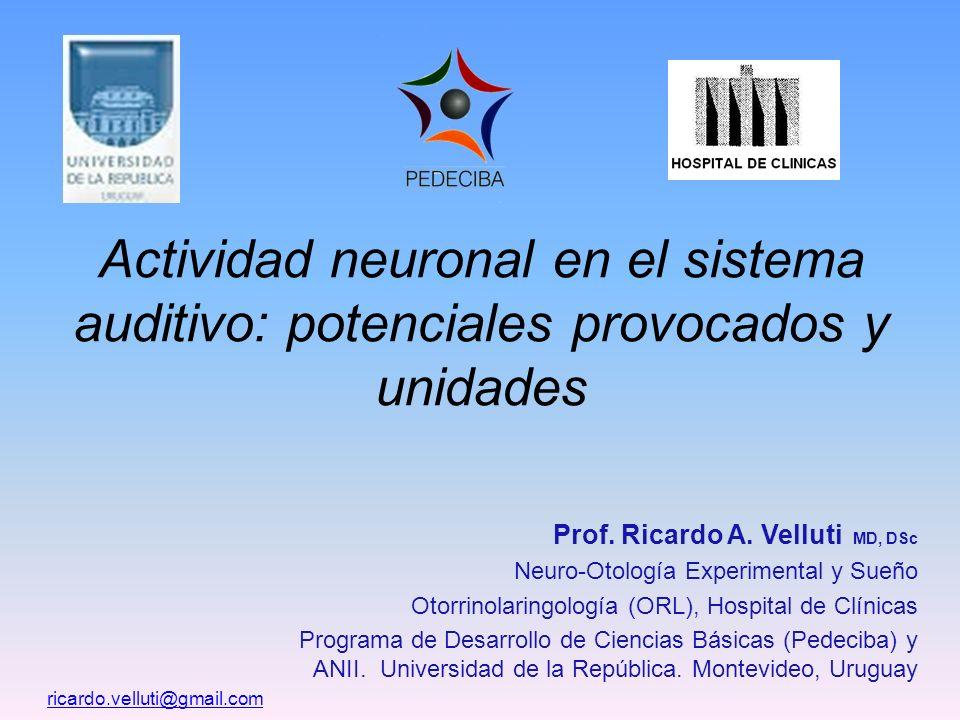 Actividad neuronal en el sistema auditivo: potenciales provocados y unidades