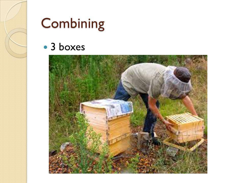Combining 3 boxes