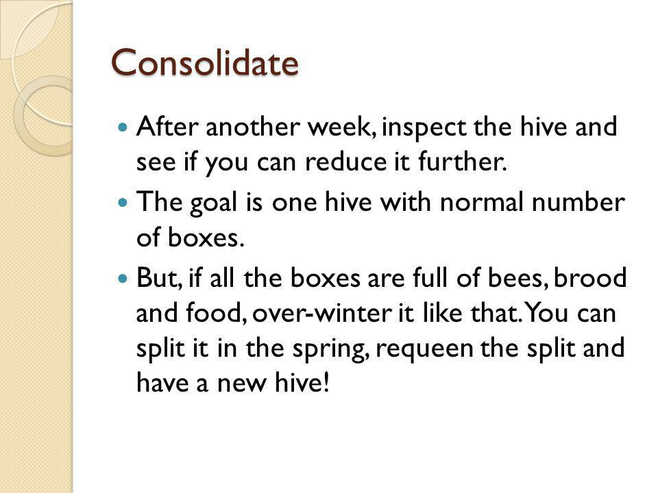 Consolidate After another week, inspect the hive and see if you can reduce it further. The goal is one hive with normal number of boxes.