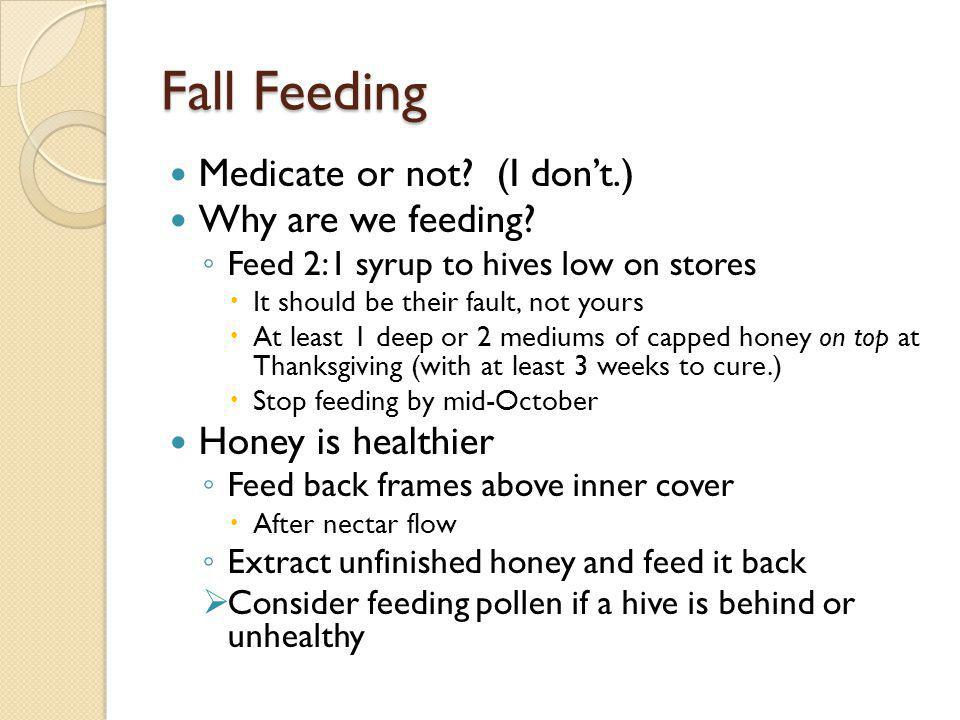 Fall Feeding Medicate or not (I don't.) Why are we feeding
