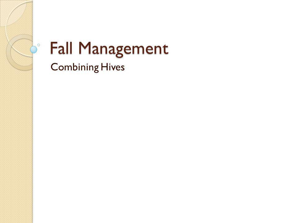Fall Management Combining Hives