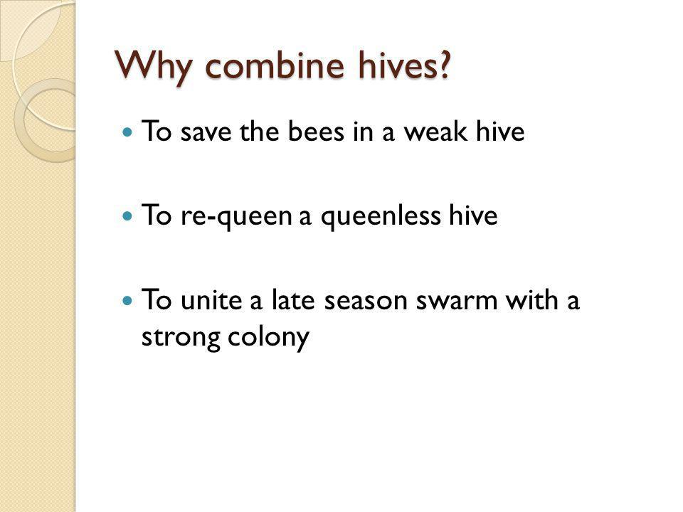 Why combine hives To save the bees in a weak hive