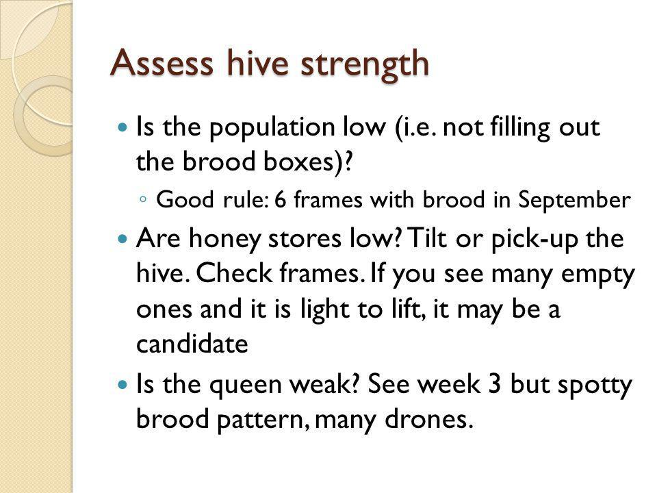 Assess hive strength Is the population low (i.e. not filling out the brood boxes) Good rule: 6 frames with brood in September.