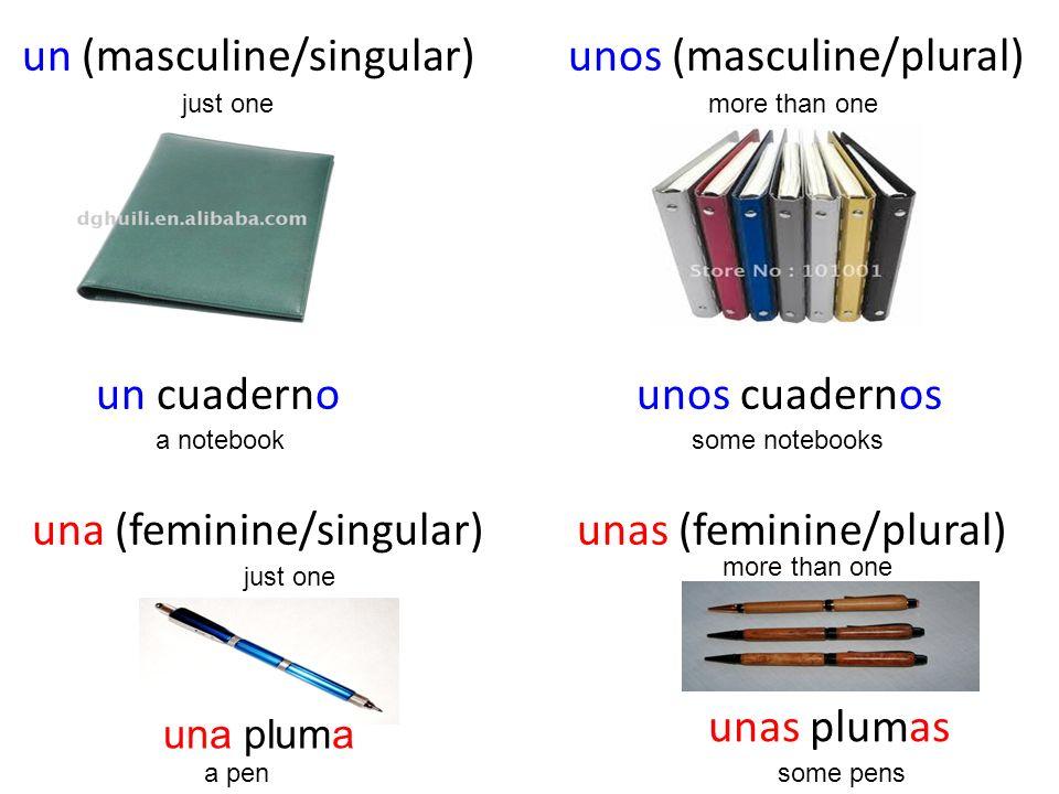 un (masculine/singular) unos (masculine/plural) un cuaderno unos cuadernos una (feminine/singular) unas (feminine/plural)