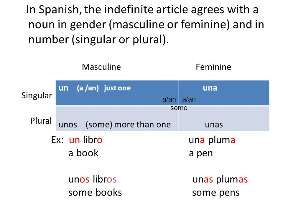 In Spanish, the indefinite article agrees with a noun in gender (masculine or feminine) and in number (singular or plural).