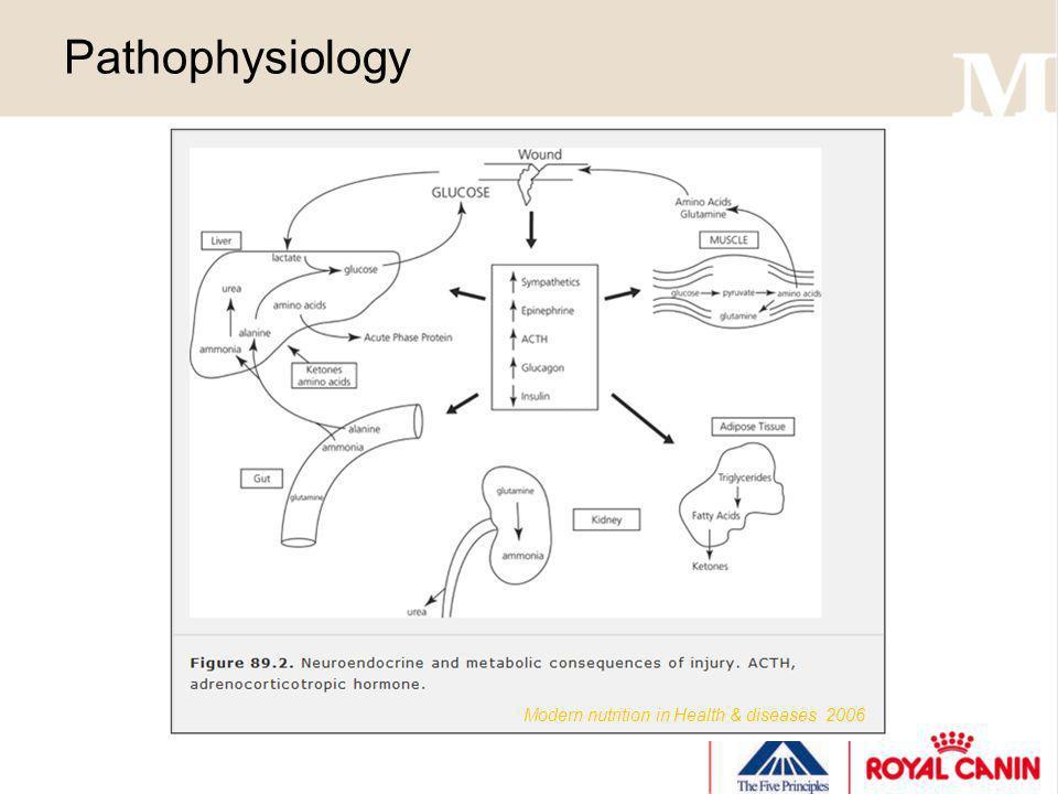 Pathophysiology Modern nutrition in Health & diseases 2006