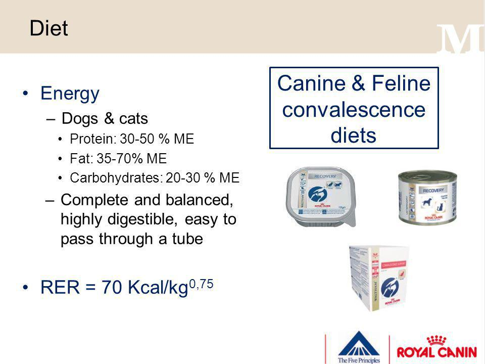 Canine & Feline convalescence diets