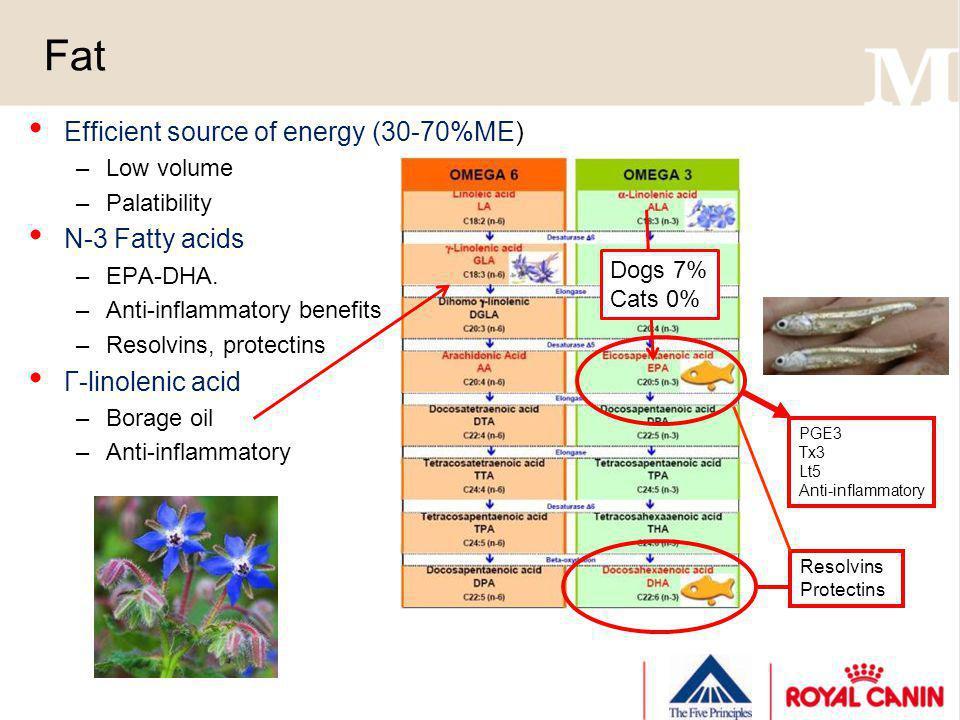 Fat Efficient source of energy (30-70%ME) N-3 Fatty acids