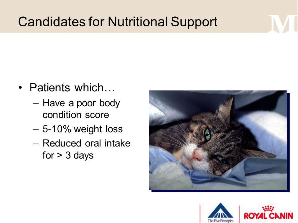 Candidates for Nutritional Support