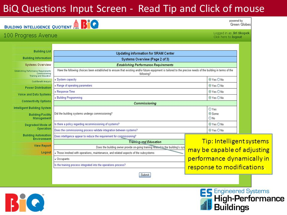 BiQ Questions Input Screen - Read Tip and Click of mouse