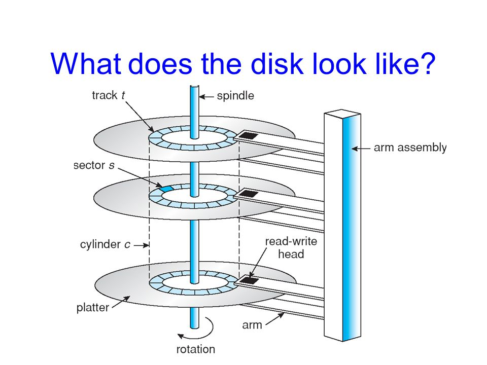 What does the disk look like