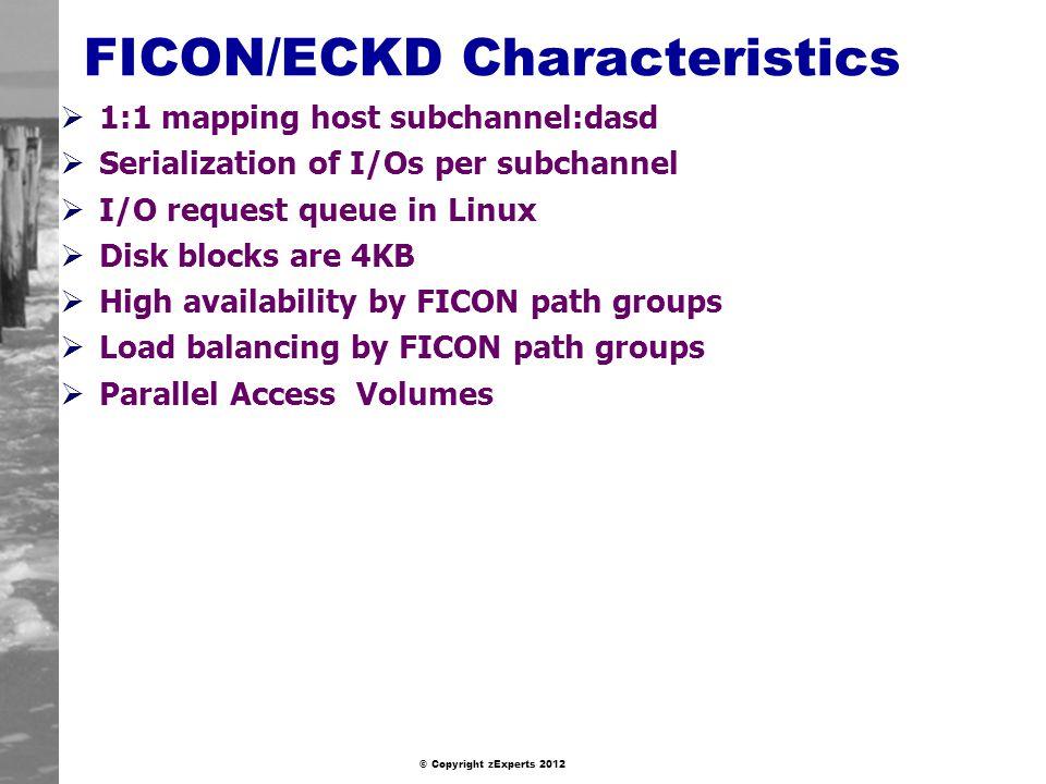FICON/ECKD Characteristics